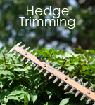 hedgetrimming
